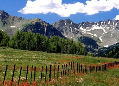 Использование земель для выпаса скота