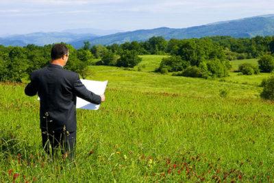 Кто обязан делать: владелец садовой книжки или товарищество