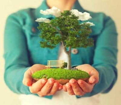 До какого года продлена приватизация 2019 дачных участков квартиры земли садовых участков сроки бесплатной