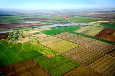 Соглашение об установлении сервитута земельного участка